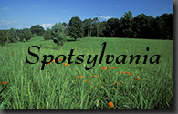 Spotsylvania Battlefield, Predericksburg and Spotsylvania National Military Park